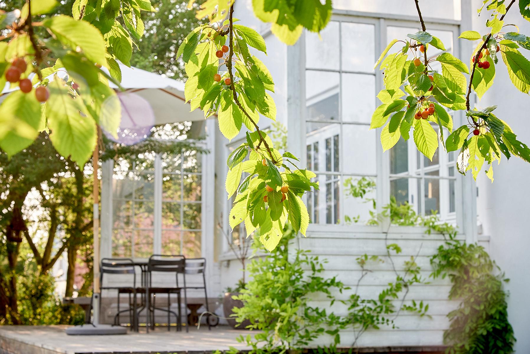 Kirsebærgården-Førstesortering_SG42405